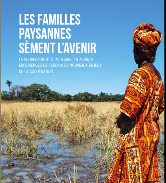Couv publication SA Afrique 2016